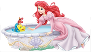 Ariel garden 01