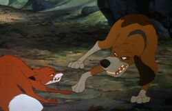 Fight Scene - (The Fox and The Hound)
