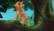 Lionking3-disneyscreencaps.com-4968