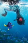 Finding Dory Textless 13