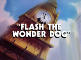 Flash the Wonder Dog (episode)