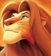 Simba; erwachsen