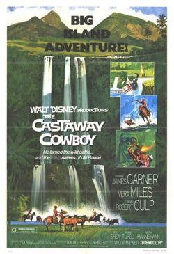 The Castaway Cowboy FilmPoster