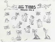 Tibbs-model-sheet