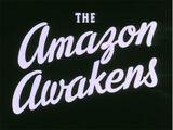 The Amazon Awakens