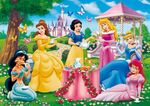 Disney-Princess-disney-princess-33889819-500-352