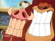 Timon & Pumbaa Rome Alone2