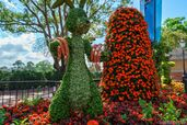 Epcot-International-Flower-and-Garden-Festival Full 29677