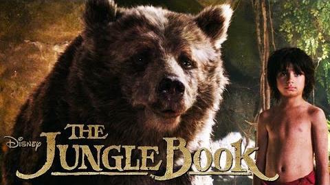THE JUNGLE BOOK - Balu - Ab 14