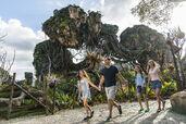 Pandora-–-The-World-of-Avatar-at-Disney's-Animal-Kingdom