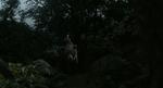 The Jungle Book 2016 (film) 09