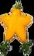 Paopu Fruit