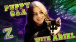 Ariel Martin Puppy Q&A Challenge! 🐶 ZOMBIES 2 Disney Channel
