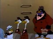 Owl Capone (3)