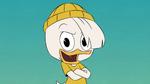 Phooey Duck 2019