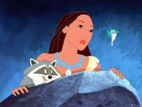 Pocahontas, Meeko and Flit