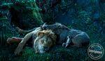 The Lion King 2019 still 4