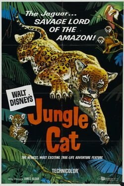 1960-jaguar-1