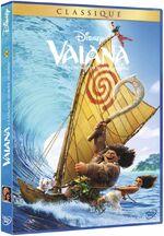 Moana DVD France