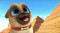 Puppy Dog Pals (010)