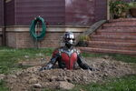 Ant-Man (film) 78
