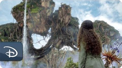 Pandora - The World of Avatar - Disney's Animal Kingdom