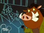 Timon and Pumbaa - ChristopherColumbus