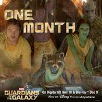 Gotg One Month DVD Promo