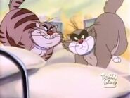 Pintscats28