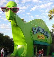 Sunglass Shack Green