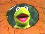 A still shot of Kermit in a circle of a closing sequence background for Muppet Treasure Island Sing-Alongs
