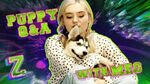 Meg Donnelly Puppy Q&A Challenge! 🐶 ZOMBIES 2 Disney Channel