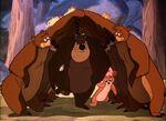 Baloo in Bongo