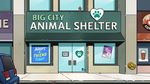 Big City Animal Shelter