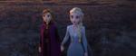 Frozen II (45)