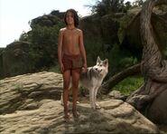 Mowgli (Mowgli's Story) 8