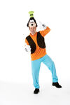 Goofy adult costume