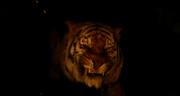 The Jungle Book 2016 (film) 21
