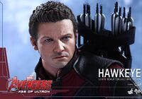 Hawkeye AOU Hot Toys 08