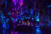 Navi-River-Journey-in-Pandora-–-The-World-of-Avatar-at-Disney's-Animal-Kingdom
