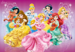 Disney princesses the palace pets