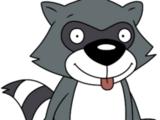Scootch Raccoon