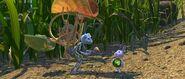 Bugs-life-disneyscreencaps.com-871