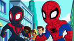 Spider-Man and Ultimate Spider-Man in Marvel Super Hero Adventures