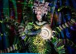 Ursula shell broadway