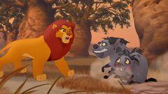Simba-hyenas