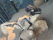 Pachycephalosaurus Boneyard