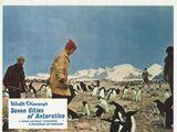 Seven Cities of Antarctica