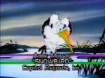 Dtv snowbird title