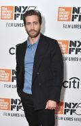 Jake Gyllenhaal NYFF